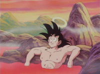 Dragon Ball Z 14 2.png